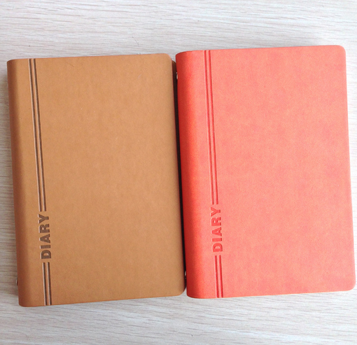 Custom loose-leaf coil diary notebook